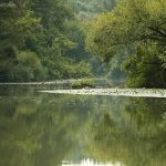 Tisza-tó északi rész