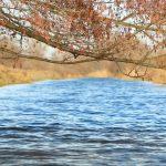 Decemberi tavasz,kajakkal a Duna-völgyi csatornán